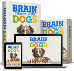 Brain Training For Dogs System by Adrienne Farricelli